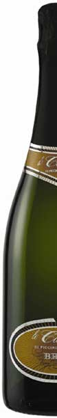 italian sparkling quality white wine by organic grapes