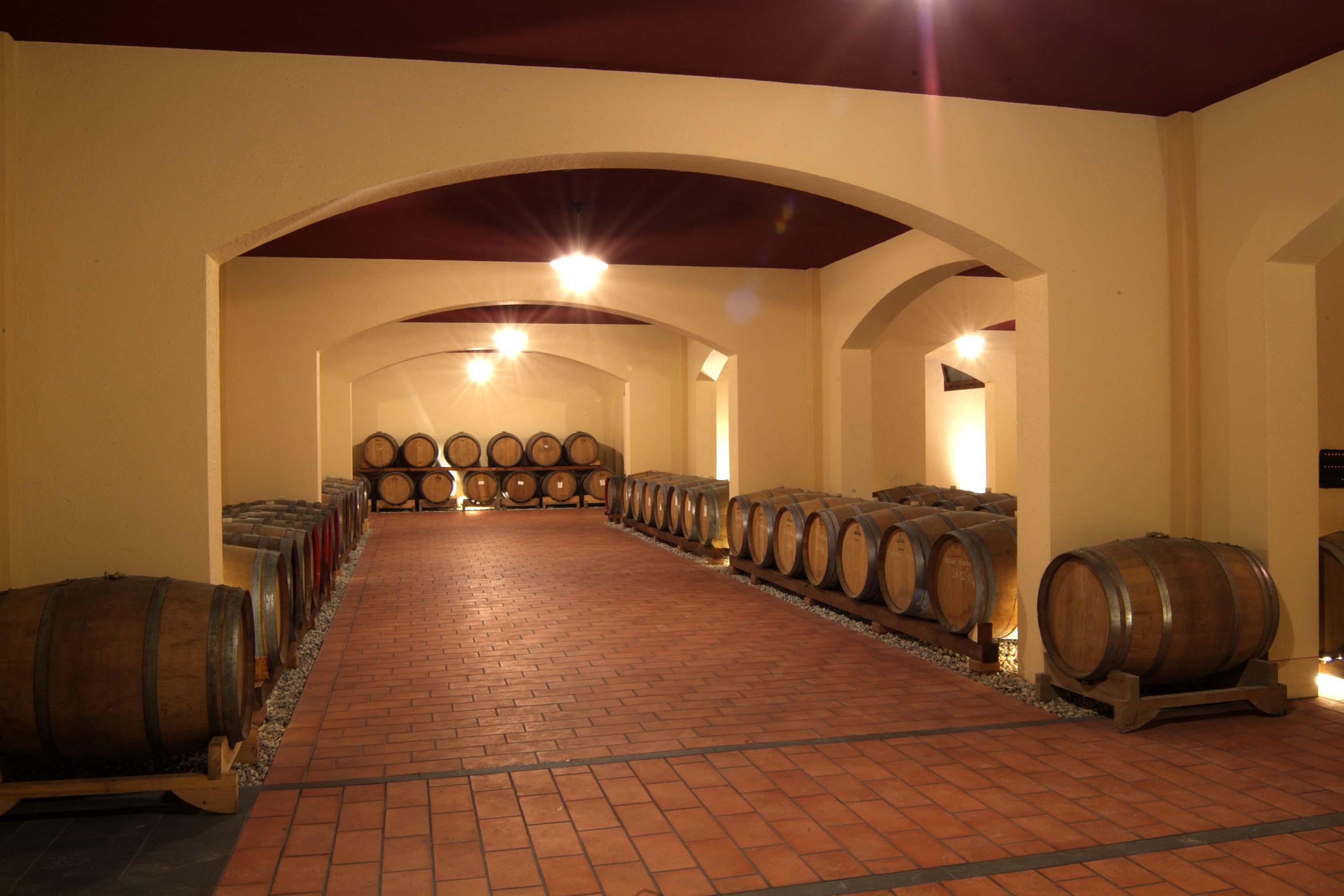 Barricaia per l'affinamento in barriques dei vini a agricoltura biologica dell'Azienda Agricola e Carine di Belfiore di Pramaggiore, Venezia