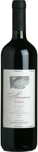 Ammiana, vino rosso da Venezia, vigneto a piede franco, agricoltura biologica