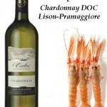 risotto di scampi e chardonnay DOC lison-pramaggiore Le Carline