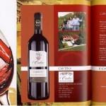 venezia wine award 2010 CABERNET DOC Lison-Pramaggiore senza solfiti aggiunti