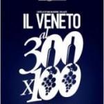Il Veneto al 300x100