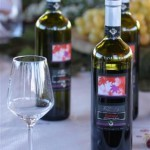 vini biologici Le Carline