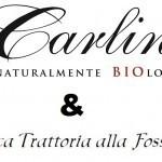 LOGO CARLINE