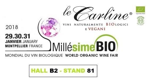 banner Millesime_bio_2018_logo